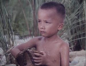chłopiec赛虎 Saihu 1982 film