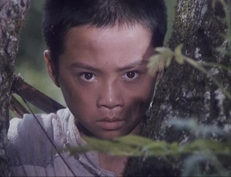 李浩 饰Li Hao Shi赛虎Saihu 1982 film